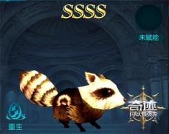 开年首秀 《奇迹:最强者》4S战宠小熊猫亮相